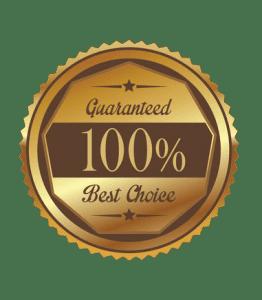 garanti-100
